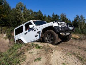 fuhrenforest-jeep